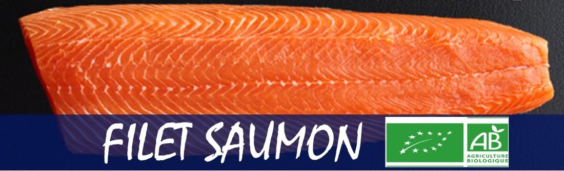 Filet saumon Bio